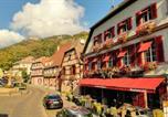 Hôtel Kintzheim - Hotel Restaurant Au Cheval Blanc-1