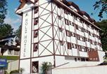 Hôtel Joinville - Holz Hotel