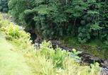 Location vacances Hilo - Wailele Nalo Home-2