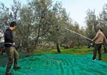Location vacances Cerveteri - Agriturismo Borgo dell'Aschetto-4