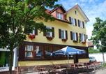Hôtel Freudenstadt - Hotel Adler-2