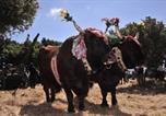 Location vacances Arbus - Agriturismo Rocca su Moru-4