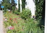 Location vacances Zinnowitz - Baltisches Haus Pension Moll-4