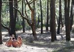 Camping Gironde - Chm de Montalivet-4