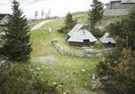 Location vacances Gornji Grad - Chalet Lepenatka - Velika planina-2