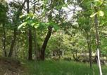 Location vacances Gallinaro - Casetta Immersa nella Natura-2