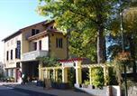 Hôtel Le Chambon-sur-Lignon - Hôtel Restaurant les Platanes-1