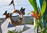 Location vacances Deshaies - Villa Guadeloupe-2