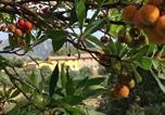 Location vacances Villacidro - Agriturismo Is Conchisceddas-1
