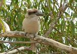 Location vacances Pakenham - Kookaburra nest-1