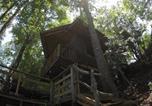 Location vacances Temuco - Forêt-1