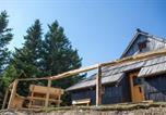 Location vacances Cerklje na Gorenjskem - Koča Bistra - Velika planina-1