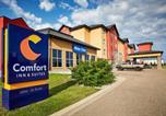 Hôtel Red Deer - Comfort Inn & Suites Red Deer