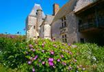 Location vacances Soings-en-Sologne - Chateau de Chémery-4