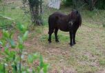 Location vacances Manresa - Villa Pla Els Bacus-4