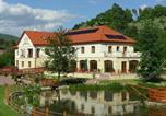 Hôtel Košice - Aranybánya Hotel-1