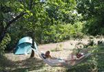 Camping Loire - Aire Naturelle de Camping Les Cerisiers-1