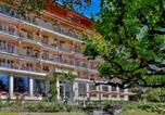 Hôtel Les chutes du Trümmelbach  - Hotel Wengener Hof-2