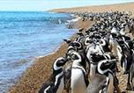 Location vacances Puerto Madryn - Depto céntrico de 2 amb con vista al mar-2