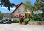 Hôtel Guebwiller - A l'Arbre Vert-2