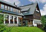 Hôtel Falkenstein/Vogtland - Ferienhotel Mühlleithen-1