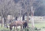 Location vacances Oliena - Sardegna Country House-2