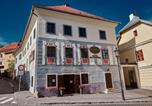 Hôtel Banská Štiavnica - Hotel Salamander-1