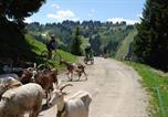 Location vacances Les Gets - Chalet Bel'alpe-4