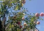 Location vacances Sainte-Maure-de-Touraine - Le Petit Jardin Yoyo-3