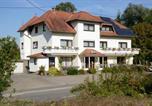 Hôtel Deux Ponts - Hotel Bliesbrück