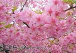 Location vacances Shimoda - 伊豆稲取テラス Izu Inatori Terrace - Kando-3