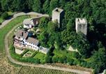 Hôtel Achern - Burg Windeck S-1