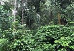 Villages vacances Chikmagalur - Room Stay In A Plantation Farm Stay-3