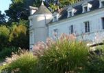 Hôtel Chédigny - Manoir de la Vigneraie-4