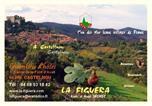 Location vacances Prunet-et-Belpuig - La Figuera-4