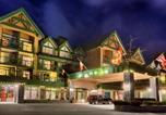 Hôtel Whistler - Pinnacle Hotel Whistler-3