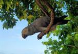 Location vacances  Sierra Leone - Tasso Island-3