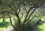 Location vacances  Ardèche - Les 23 Muriers-3