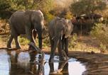 Camping Afrique du Sud - Umlani Bushcamp-1