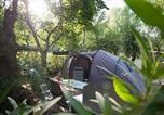 Camping avec Quartiers VIP / Premium Le Grau-du-Roi - Camping Abri de Camargue-4