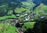 Camping 4 étoiles Saulxures-sur-Moselotte - Campingplatz Schwarzwaldhorn-2