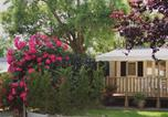 Camping  Acceptant les animaux L'Epine - Camping Le Grand Jardin-2