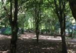 Camping 4 étoiles Ballan-Miré - Castel L'Orangerie de Beauregard-2