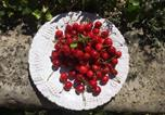Location vacances Baschi - Charming cottage with pretty garden full of fruit trees-3