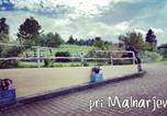 Location vacances Notranjsko-kraka - Turisticna kmetija Pri Malnarjevih-2
