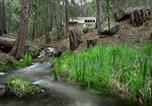 Location vacances Fish Camp - 11r Spring Meadow Retreat-2