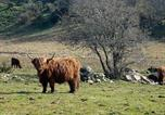 Location vacances Beauly - Roe Deer Cottage-3