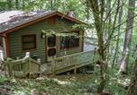 Location vacances Blue Ridge - Deepwater Lodge-2
