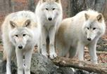 Location vacances Goncourt - Gîte Les 3 Loups-2