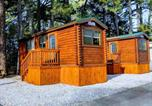 Camping États-Unis - Anvil Campground-2